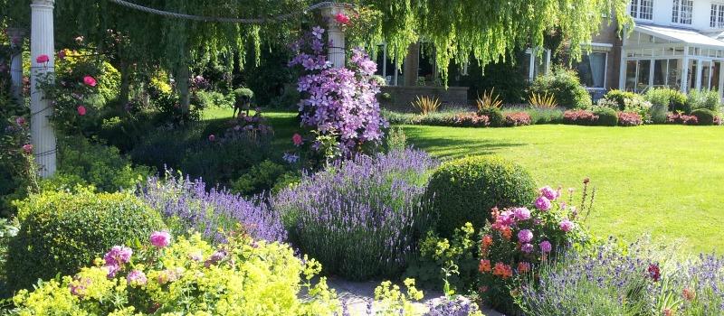 Caxton House garden