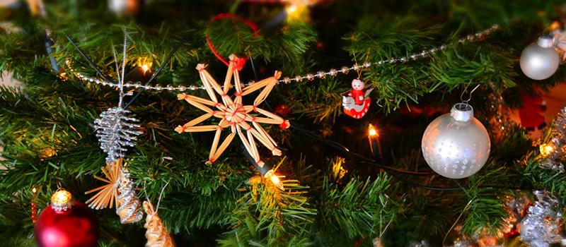 Acorns Gym Christmas Quiz Night